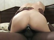 Week, Catalyst wife begs for black cum